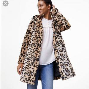 Loft by Ann Taylor Leopard Fur Coat